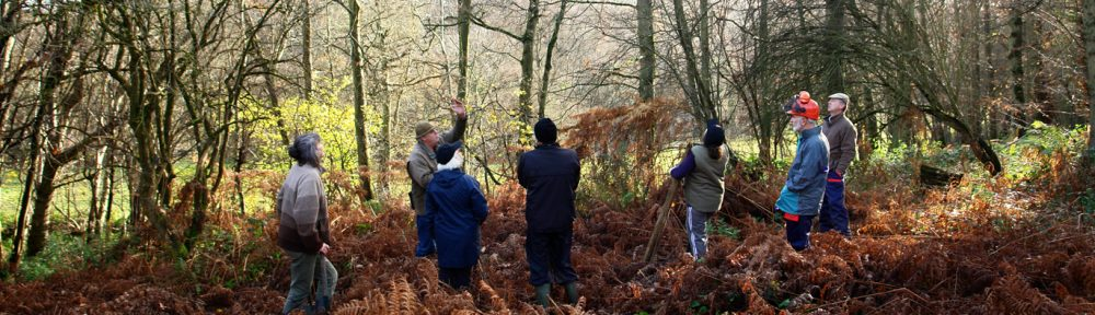 Herefordshire Tree Warden Network