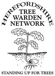 H-Tree Warden Network Oakling Logo sm