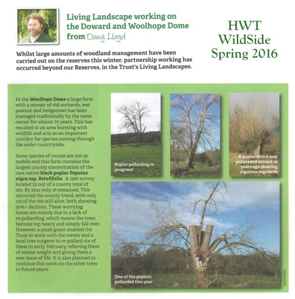 Doug's HWT BP Pollarding Article Spring 2016 web